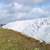 1) Blanc Rouleau 9.8 x 25 110g/m² 245m²